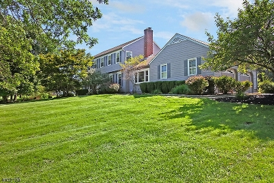 Readington Twp. Single Family Home For Sale: 18 Powder Horn Rd
