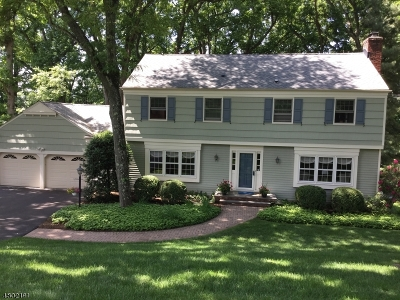 Chatham Twp Single Family Home For Sale: 110 Huron Dr