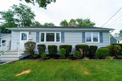 Parsippany-Troy Hills Twp. Single Family Home For Sale: 22 Ute Ave