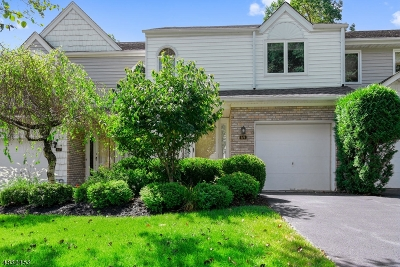 Parsippany-Troy Hills Twp. Condo/Townhouse For Sale: 69 Averell Dr