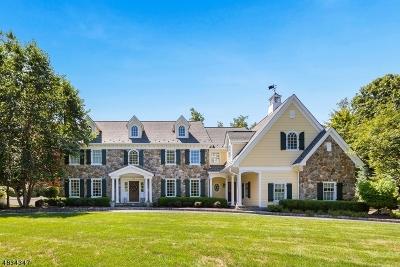 Franklin Lakes Boro Single Family Home For Sale: 304 Sleepy Hollow Ln