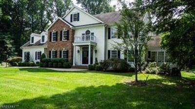 Mendham Boro, Mendham Twp. Single Family Home For Sale: 6 Mill Stone Rd