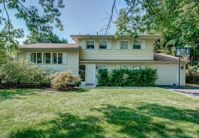 Springfield Single Family Home For Sale: 6 Hemlock Ter