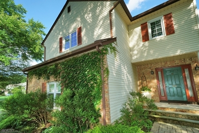 Morris Twp. Single Family Home For Sale: 24 Cottonwood Rd