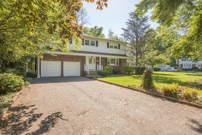 Clark Twp. Single Family Home For Sale: 227 Hawthorne Dr