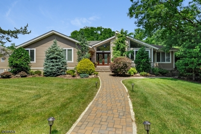 Single Family Home For Sale: 419 Long Hill Dr