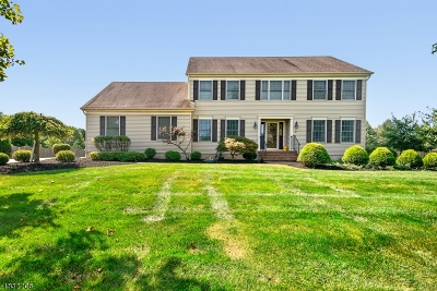 Hillsborough Twp. Single Family Home For Sale: 9 Mc Intire Dr