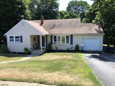 Roxbury Twp. Single Family Home For Sale: 19 Brent Pl