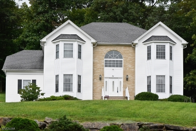 Mount Olive Twp. Single Family Home For Sale: 51 Indian Spring Rd