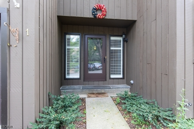 Harding Twp. NJ Condo/Townhouse For Sale: $579,900