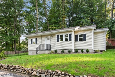 Sparta Twp. Single Family Home For Sale: 13 W Cherry Tree Ln