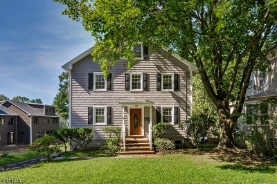 Single Family Home For Sale: 90 Hobart Ave