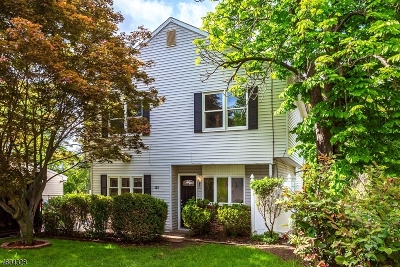 Edison Twp. Single Family Home For Sale: 21 Jean Pl