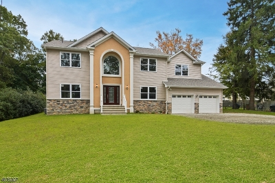 Mount Olive Twp. Single Family Home For Sale: 52 Netcong Rd