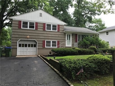 Edison Twp. Single Family Home For Sale: 82 Cedar Street
