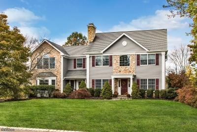 Bernards Twp. Single Family Home For Sale: 480 Somerville Rd