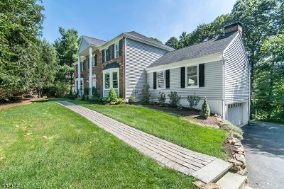 Randolph Twp. Single Family Home For Sale: 61 Longview Ave