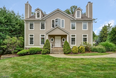 Basking Ridge Single Family Home For Sale: 9 Conkling St