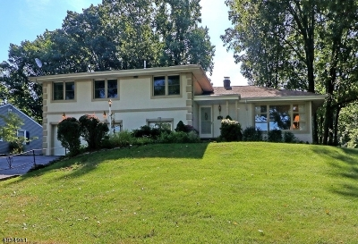 Scotch Plains Twp. Single Family Home For Sale: 2322 Redwood Rd