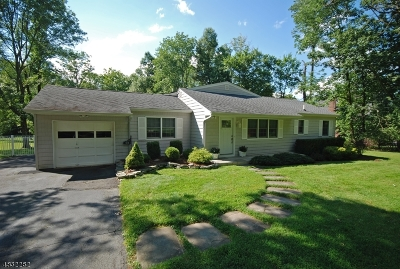 Warren Twp. Single Family Home For Sale: 105 King George Rd