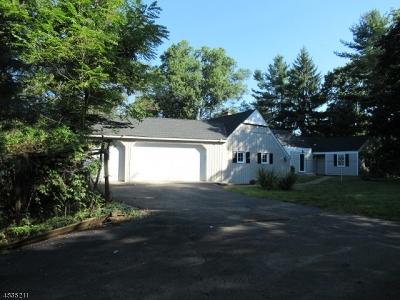 Bernards Twp., Bernardsville Boro Single Family Home For Sale: 145 Lyons Rd