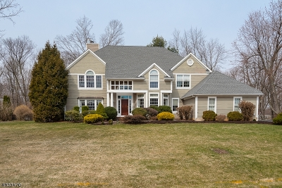 Chester Boro Single Family Home For Sale: 5 Ammerman Way