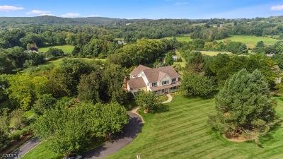 Tewksbury Twp. Single Family Home For Sale: 9 Farmersville Road
