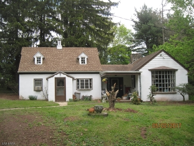 Hillsborough Twp. Single Family Home For Sale: 598 River Road