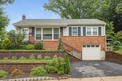 Morristown Town, Morris Twp. Single Family Home For Sale: 20 Valley View Dr