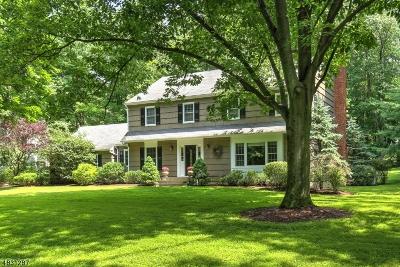 Bernardsville Boro Single Family Home For Sale: 189 Anderson Hill Rd