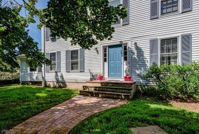 Readington Twp. Single Family Home For Sale: 17 Devore Rd
