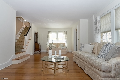 WestField Single Family Home For Sale: 527 S Chestnut St