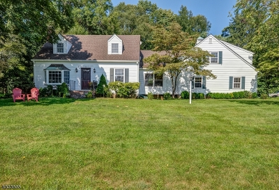 Harding Twp. NJ Single Family Home For Sale: $920,000