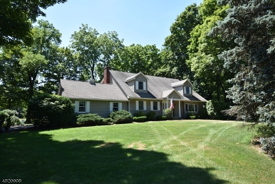 Mount Olive Twp. Single Family Home For Sale: 54 Main Rd