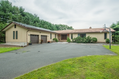 Boonton Twp. Single Family Home For Sale: 453 Rockaway Valley Rd