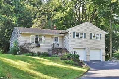 Morris Twp. Single Family Home For Sale: 18 Dellwood Ave