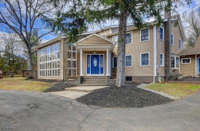 Branchburg Twp. Single Family Home For Sale: 79 Lamington Rd