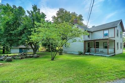 Franklin Twp. Single Family Home For Sale: 42 Joe Ent Rd