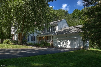 Bernardsville Boro Single Family Home For Sale: 45 Mullens Ln