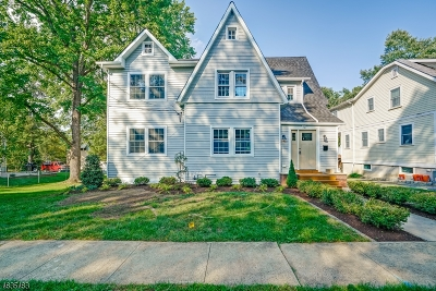 Berkeley Heights Single Family Home For Sale: 12 Princeton Ave