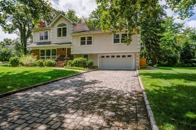 WestField Single Family Home For Sale: 29 Woodbrook Cir