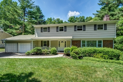 Berkeley Heights Single Family Home For Sale: 102 Exeter Dr