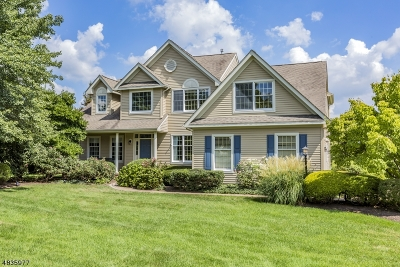 Montgomery Twp. Single Family Home For Sale: 5 Spyglass Rd