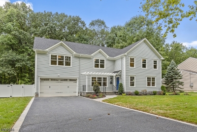 Berkeley Heights Single Family Home For Sale: 295 Chaucer Dr