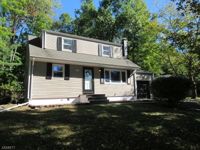 Bridgewater Twp. Single Family Home For Sale: 1007 Washington Valley Rd