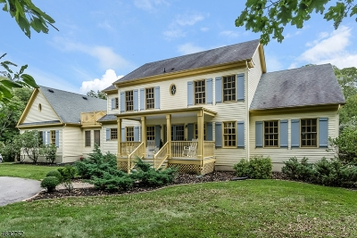 Readington Twp. Single Family Home For Sale: 53 Pleasant Run Rd