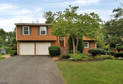 Piscataway Twp. Single Family Home For Sale: 37 Bristol Rd