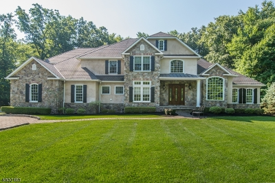 Montville Twp. Single Family Home For Sale: 51a Stony Brook Rd