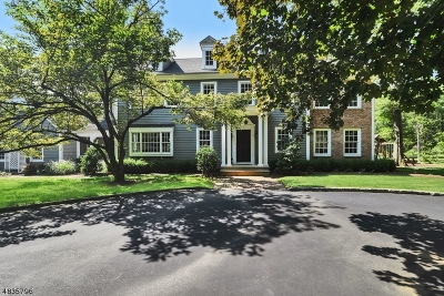 Bernards Twp. Single Family Home For Sale: 146 Mine Brook Rd