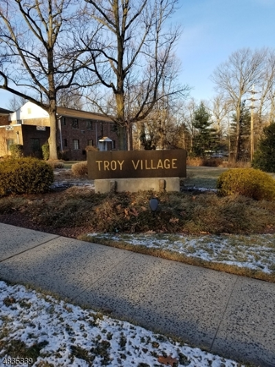 Springfield Condo/Townhouse For Sale: 61-B Troy Dr Bldg 8 #B